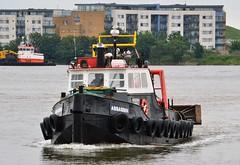 Assassin (4) @ KGV Lock 03-06-16 (AJBC_1) Tags: riverthames london workboat predatorcharters ©ajc dlrblog ship boat vessel england unitedkingdom uk northwoolwich eastlondon newham londonboroughofnewham nikond3200 gallionsreach damen1500pushycat ploughdredger ajbc1