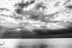 20160531-190905SWw (AlexM.) Tags: adria izola kste meer mittelmeer slovenia slowenien strand beach beachlife coast mediteraniansea sea