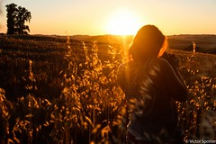 Love & Sunset (plane-spotter31) Tags: flowers sunset sky woman sun flower love nature beautiful field sunshine silhouette sunrise canon wonderful hair landscape photography twilight women photographie view live gorgeous awesome details country moment capture