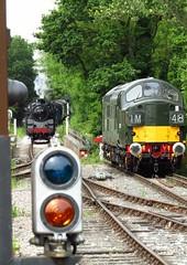 Ongar station, Essex (Deptford Draylons) Tags: england trains railways essex steamlocomotives ongar preservedrailways class37 eppingongarrailway dieselelectriclocomotives britishrailwaysstandardclass4