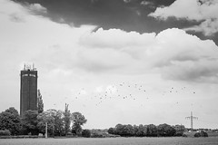 #21 Water Tower (JoHu) Tags: sky white black tree bird nature colors architecture clouds project germany blackwhite flora europe outdoor watertower geography crow powerpole heinsberg johu johude project502 project5022016 hlhoven