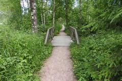The long and winding path (KaarinaT) Tags: bridge summer green finland helsinki meadow peaceful serene vuosaari windingpath uutela naturepath longandwindingroad longandwindingpath