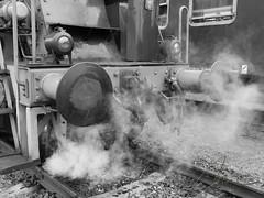 steam (Majka_) Tags: blackwhite detail bw steam steamlocomotive historicalmachine bumper
