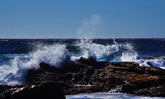 WaveTwo (Wolfram Burner) Tags: ocean life park ca water bay monterey waves state pacific grove tide salt crab anemone pools burner asilomar hermit wolfram scgis