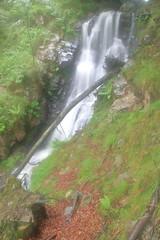 Parque natural de #Gorbeia #Orozko #DePaseoConLarri #Flickr -115 (Jose Asensio Larrinaga (Larri) Larri1276) Tags: 2016 parquenatural gorbeia naturaleza bizkaia orozko euskalherria basquecountry