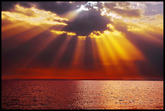 ...rays... (zio.paperino) Tags: sunset red sea sky italy orange sun mer sol nature water yellow clouds atardecer soleil mar nikon italia tramonto nuvole mare coucher natura rays sole puesta acqua calabria catanzaro raggi lamezia cosenza d90 amantea falerna abigfave gizzeria ziopaperino mygearandme