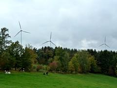 Technik und Natur (GuteFee) Tags: eifel landschaft windkraftrder kalltal