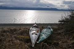 Two Solstice kayaks (The Cabin On The Road) Tags: alaska kayak kayaking seakayak seakayaking alaskaseakayaking tongassforest
