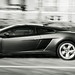 "Gallardo-10.jpg • <a style=""font-size:0.8em;"" href=""https://www.flickr.com/photos/78941564@N03/7489505452/"" target=""_blank"">View on Flickr</a>"