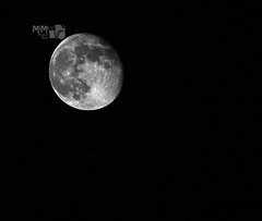 (Mi Mi ) Tags: moon night canon mimi d600     moon15 15 600