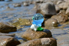 Tako & Mame (Ceci  Cuteness) Tags: blue white lake green beach water toy kiss rocks doll bokeh turquoise small mini clear seal figure octopus algae transparent tako mamegoma takochu