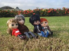 O quarteto unido curtindo a tarde!!