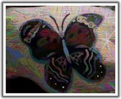 Butterfly Boucher II (Bella the Cat) Tags: art collage digital manipulated butterfly garden design wings mixedmedia framed flight multicoloured pastels pencildrawing