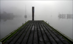 Fog (Dan @ DG Images) Tags: mist fog cloud dunedin harbour careys bay port chalmers bush post hdr green dock boat boats ships jetty sea water canon 60d pommedan dan goodwin dgimages images dg ramp landscape scenery