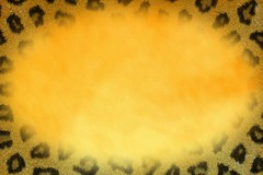 Leopard Framed Blended Yellow Texture