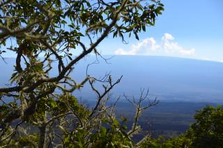Mauna Loa from Puʻu Huluhulu (DSC_4542)