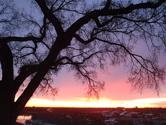 Morning-Walks-Series 55 (Mr. Happy Face - Peace :)) Tags: november winter light sunset red snow canada reflection ice luz sunrise season licht pov lumire alberta sunrisesunset lux luce  jimmyb mrhappyface  lumenbblockquoteblumen