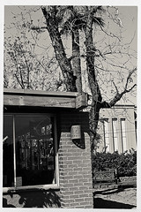 scottsdale 03498 (m.r. nelson) Tags: arizona urban bw usa southwest monochrome america blackwhite az bn americana scottsdale urbanlandscapes artphotography mrnelson newtopographic markinaz sonya77 nelsonaz