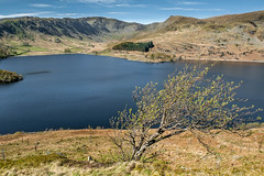 Haweswater (Graham 001) Tags: