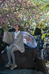 Kirschblten (Rose N. Kohl) Tags: japan stone umbrella germany garden cherry deutschland japanese thringen model nikon blossom rosa geisha kimono stein garten schirm kirschblten