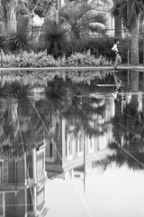 Nice - Nanananaaa (Synopsis --- Ynosang) Tags: bw water monochrome mono nice eau sony nb 40mm alpha fontaine a7 foutain jeux hexanon synopsis ynosang