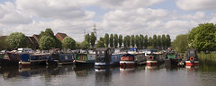 May 15th 2016 - Project 366 (Richard Amor Allan) Tags: nottingham trees tree water marina boats boat barge vessels barges castlemarina project366