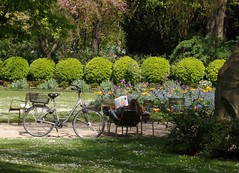 drive in (martini_bianca) Tags: park parco paris france bicycle lesen reading frankreich break jardin du pause luxembourg francia parc fahrrad vlo parigi bicicletta pausa martinibianca