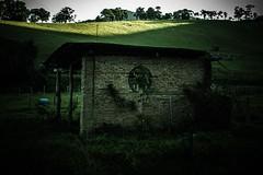 #275 of 365 days -Build (Ruadh Sionnach) Tags: build solitude creep obscure dark nature field farm house haunted pagan paganismo paganism