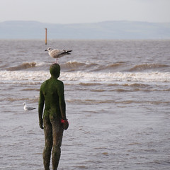 Another Place to Perch (Scouse Smurf) Tags: beach head seagull castiron perch gormley crosby antonygormley anotherplace