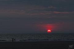 soleil rouge DxOFP 30D IMG_8081 (mich53 - Thanks for 2700000 Views!) Tags: crpuscule nuit plage france red sunset normandie cotentin mer sky redsun dusk zwielicht paysage landscape beach silhouette eos30d 2014