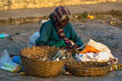 Tu es à la lumière du soleil. (- Ali Rankouhi) Tags: light india lady sitting basket bangalore ground frau selling lalbagh باغ 2016 هند بنگلور لالباغ