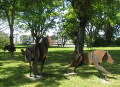 rusted runners_5450R (Michael.C.G) Tags: dogs wolves rust metal art sculptures oakbay vancouverisland beachdrive marina