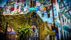 Entrada al Callejn de Hamel, La Habana (pepoexpress - A few million thanks!) Tags: city urban architecture nikon cuba streetphotography brilliant lahabana d600 nikon24120 nikond600 24120f4 pepoexpress nikond60024120mmf4 d60024120 tresdasenlahabana