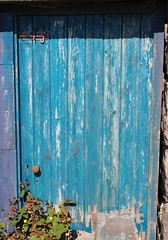 Long Time Gone (Julie Rutherford1) Tags: door blue plant scotland decay derelict dereliction aultbea