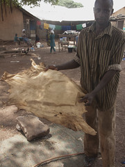 step1 (k-os) Tags: brown work goat ghana tamale lether leatherfactory tenning