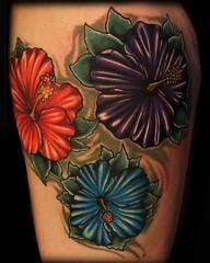 britanibiscus