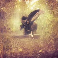 Huntress (leslie.june) Tags: bridge wild plants girl forest square swamp squareformat hunter cloak vignette huntress hunted goldenhues levitationphotography lesliejunephotography levitatingcloak
