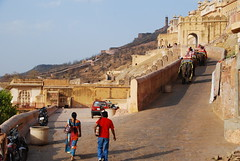 Elephant Road (Let Ideas Compete) Tags: india elephant fort historical elephants touristattraction rajasthan jaigarh indianculture jaigarth incredibleindia jaigarthfort jaigarhfort fortjaigarth