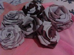 IMG00622 (Ida Rodrigues Artesantos) Tags: flores quilts patchwork bordados tapetes aplique almofadas fuxicos panosdeprato panosdecopa patchcolagm artesanatosemgeral rosasemfitas