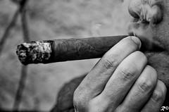 Cuban cigar (Riccardo Brig Casarico) Tags: italy wow photography photo reflex nikon europa europe italia colours foto cigar fotografia colori brig 18105 riki d5100 brigrc