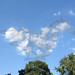 """horse cloud • <a style=""""font-size:0.8em;"""" href=""""http://www.flickr.com/photos/58917900@N06/7546730700/"""" target=""""_blank"""">View on Flickr</a>"""