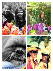 collage (sewinluv) Tags: flickrandroidapp:filter=none