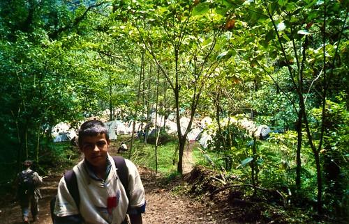 073 - Parque Natural del Savegre. Campamento junto al río.