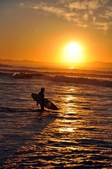 Surfer at Sunrise (missgeok) Tags: lighting sun beach water colors composition sunrise reflections golden surf waves colours sydney australia sunrays morningsun beachscene goldenglow beachsunrise cronullabeach goldensunrise surferatsunrise silhouetteofsurferwithsurfboard onemalesurfer