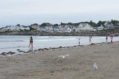 Short Sands Beach, York, Maine (thebestbeach) Tags: yorkmaine shortsands yorkbeachmaine mainebeaches shortsandsbeachyorkmaine