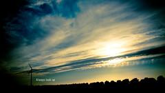 236 /365 - Always look up (Onirys Photography - Jonathan Pardo) Tags: sunset sky up look canon wind always 365 2870mm 50d
