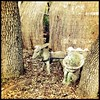 A little bit of Old Mexico... (matzohball77) Tags: yeolde gardenstatuary uploaded:by=flickstagram instagram:photo=6850946755505588562463317