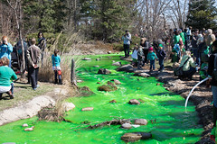 lake katherine. march 2016 (timp37) Tags: lake green st march illinois day katherine patricks dye heights palos 2016