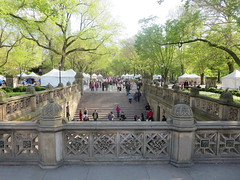 The Bethesda Terrace and Fountain area of Central Park, New York City, Manhattan Island, USA (RYANISLAND) Tags: nyc newyorkcity pink flowers ny newyork flower japan japanese spring centralpark manhattan cherryblossom  sakura cherryblossoms newyorkstate matsuri japaneseculture nys springtime jpop sakuramatsuri  cherryblossomfestival centralparknyc manhattanisland japanday welcomespring japandaycentralpark peakbloom japandaynyc japanday2016