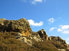 0965 Heather and rock under a blue sky (Andy in relax mode) Tags: mmm ccc ppp coppermine parysmountain 20160516